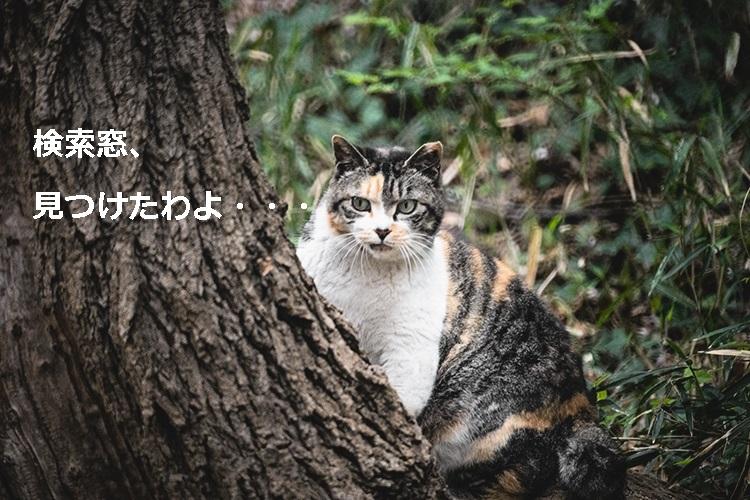 Mar93_mitehaikenaimono20130330500
