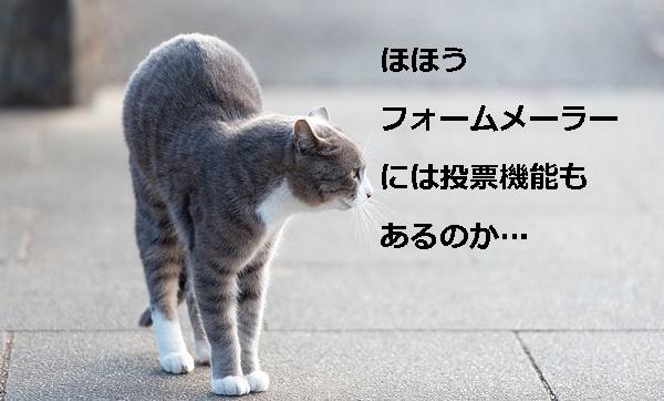 Mar88_meneko20140113600